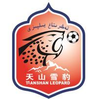 新疆天山雪豹队